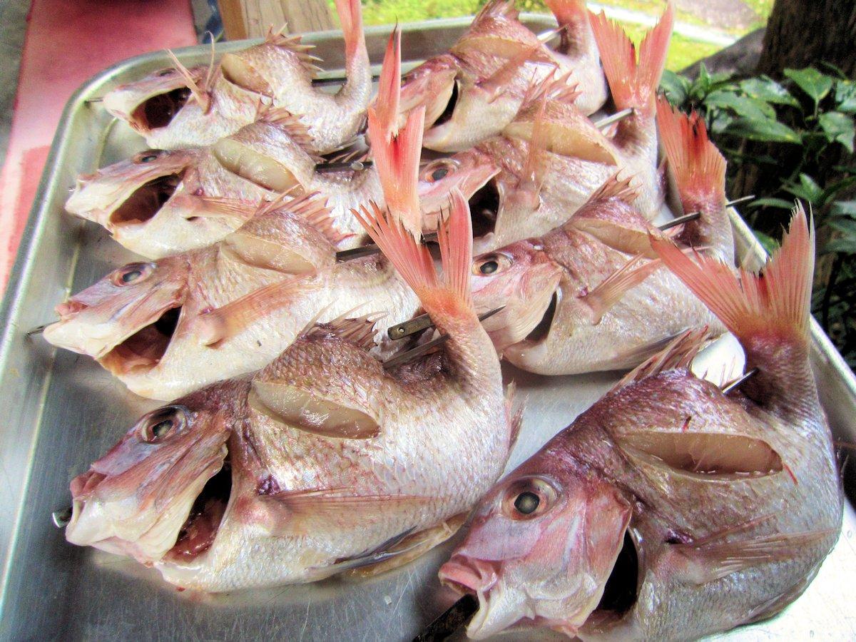 正月料理の鯛