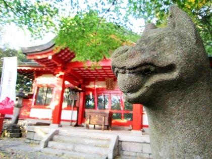 瑜伽神社のキツネ