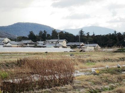 大和神社社叢と三輪山