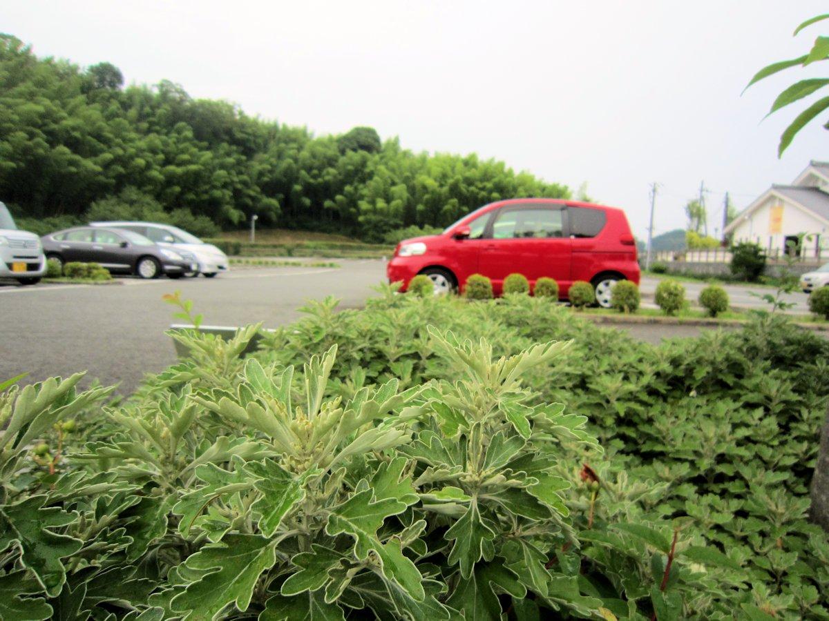万葉文化館の駐車場
