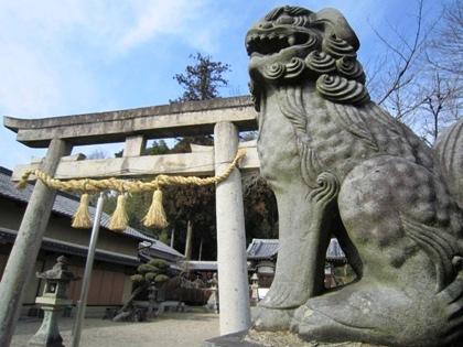 十二柱神社の狛犬