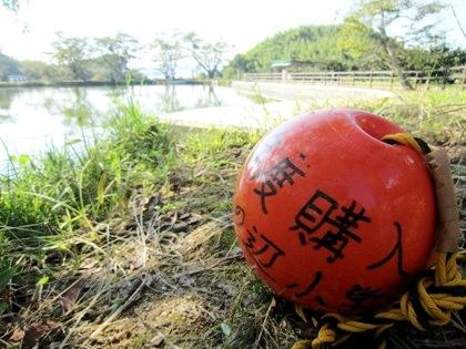内山永久寺跡の池