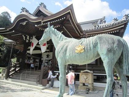 橘寺本堂と黒駒
