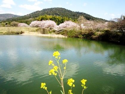 三輪山と井寺池
