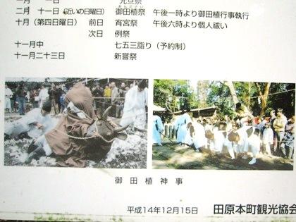 鏡作神社御田植祭の牛使い