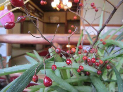 中庭の赤い実