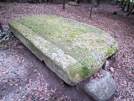 柿本寺跡の石室天井石