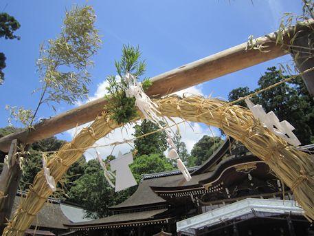 杉の茅の輪