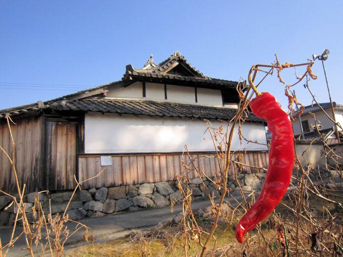 聖徳太子霊場の日向寺