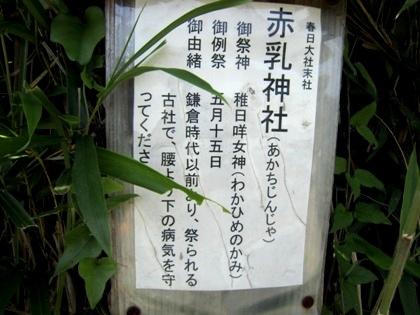 赤乳神社御祭神と由緒