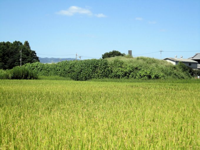 瓢箪山古墳の墳丘
