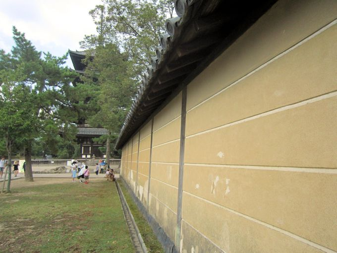 興福寺の定規筋
