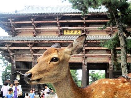 東大寺南大門と鹿