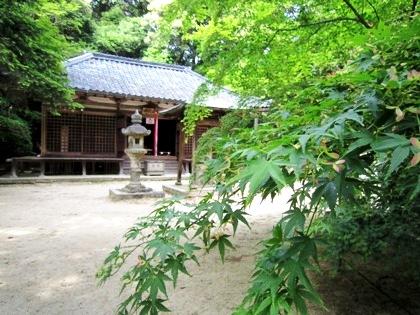 長岳寺のカエデ