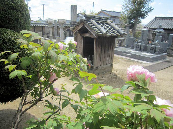 慶運寺の墓地