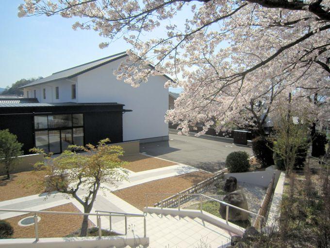 吉祥閣と桜
