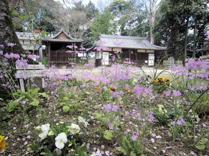 桜井市箸中の国津神社