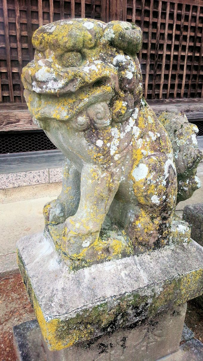 新屋敷坐春日神社の狛犬