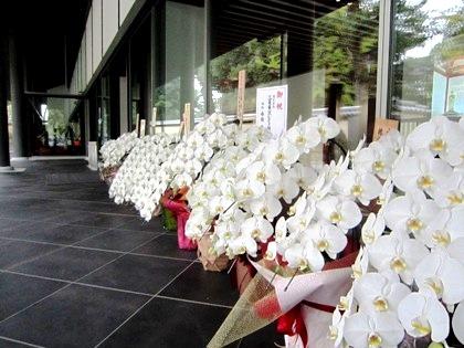 開業祝の花