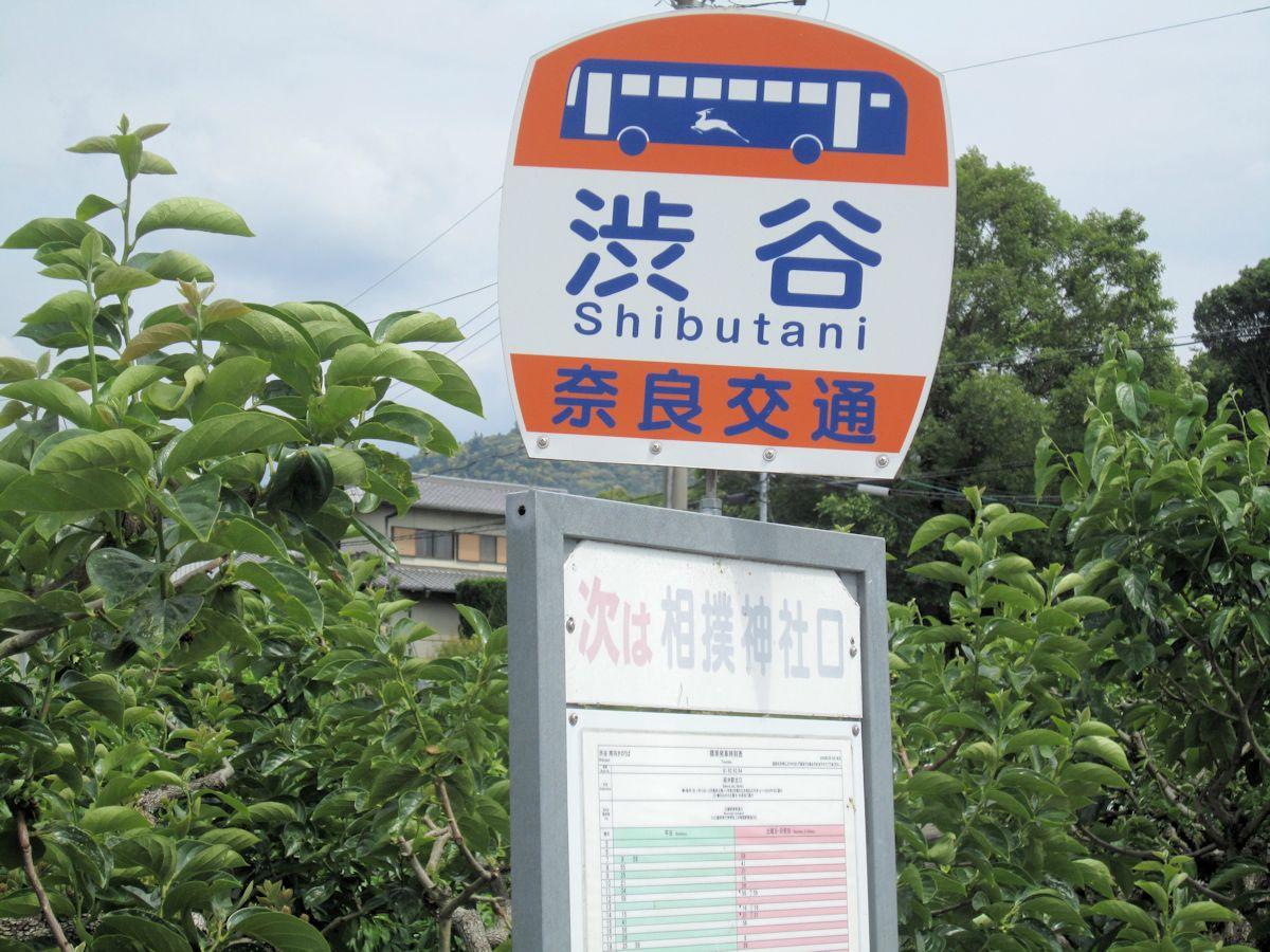 渋谷バス停