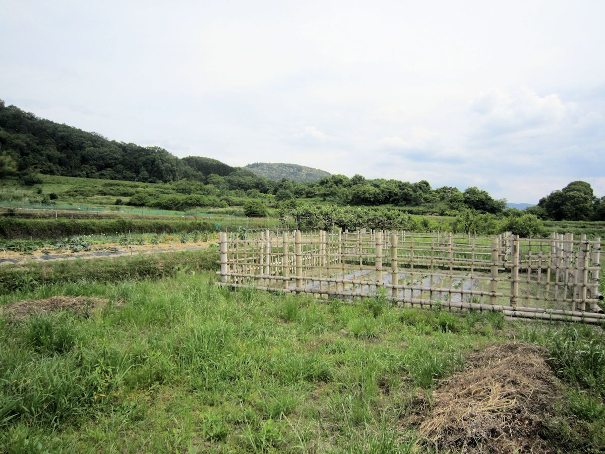 ヲカタ塚古墳アクセスルート