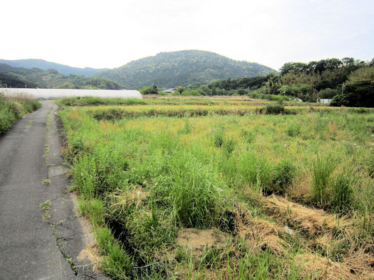 九田寺付近から望む三輪山