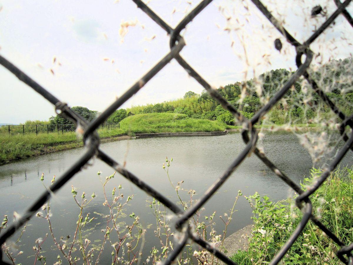 カマアゲ池のフェンス