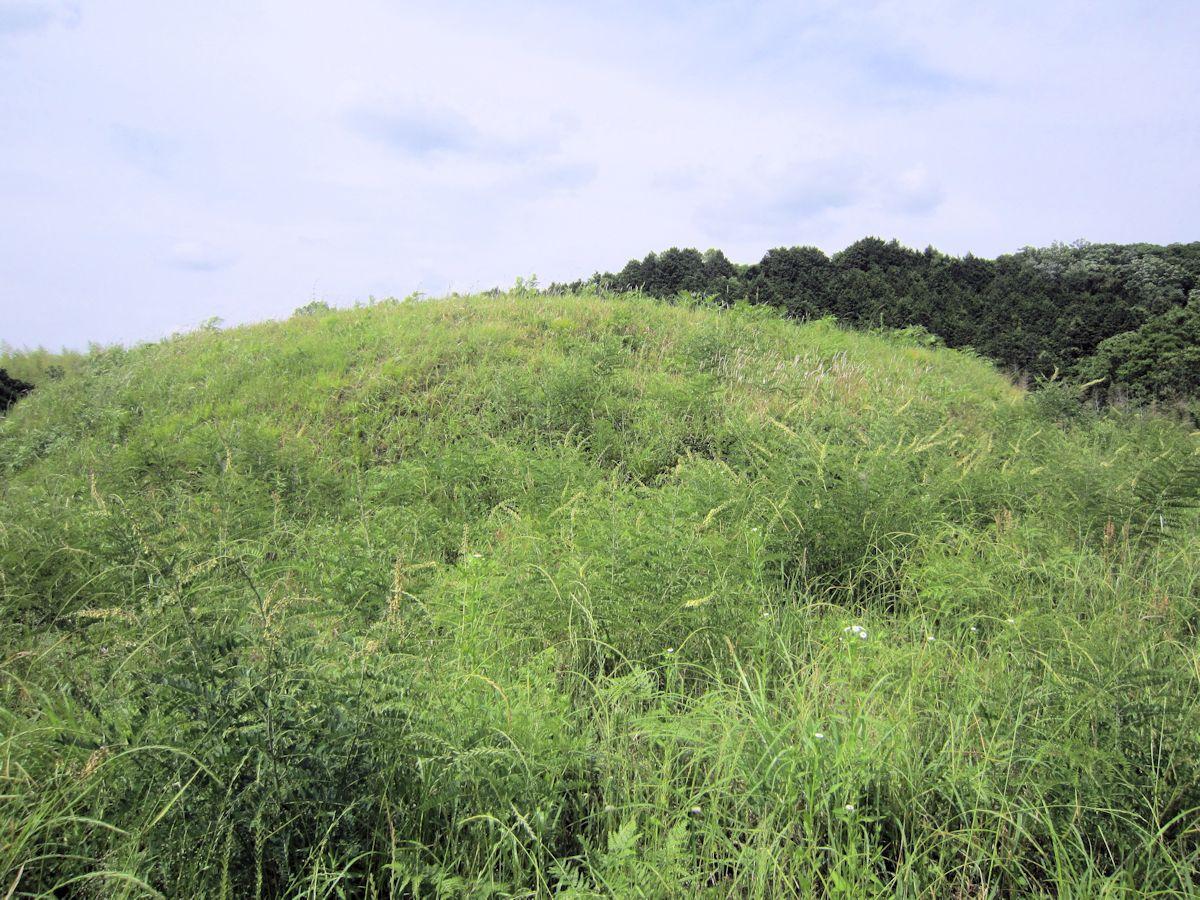 ヲカタ塚古墳の墳丘