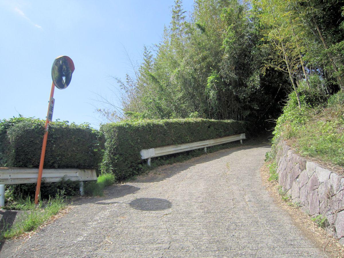穴師の坂道
