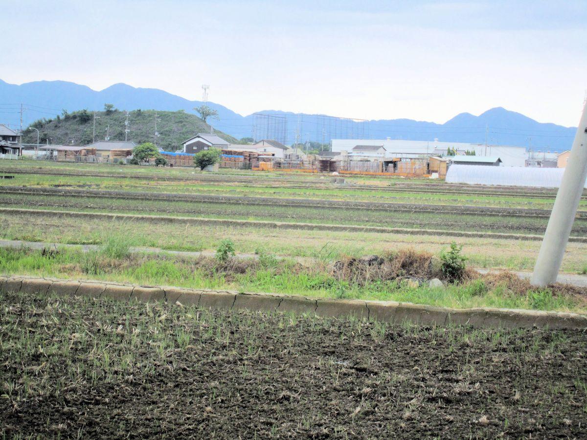 柳本防空壕址南西の風景