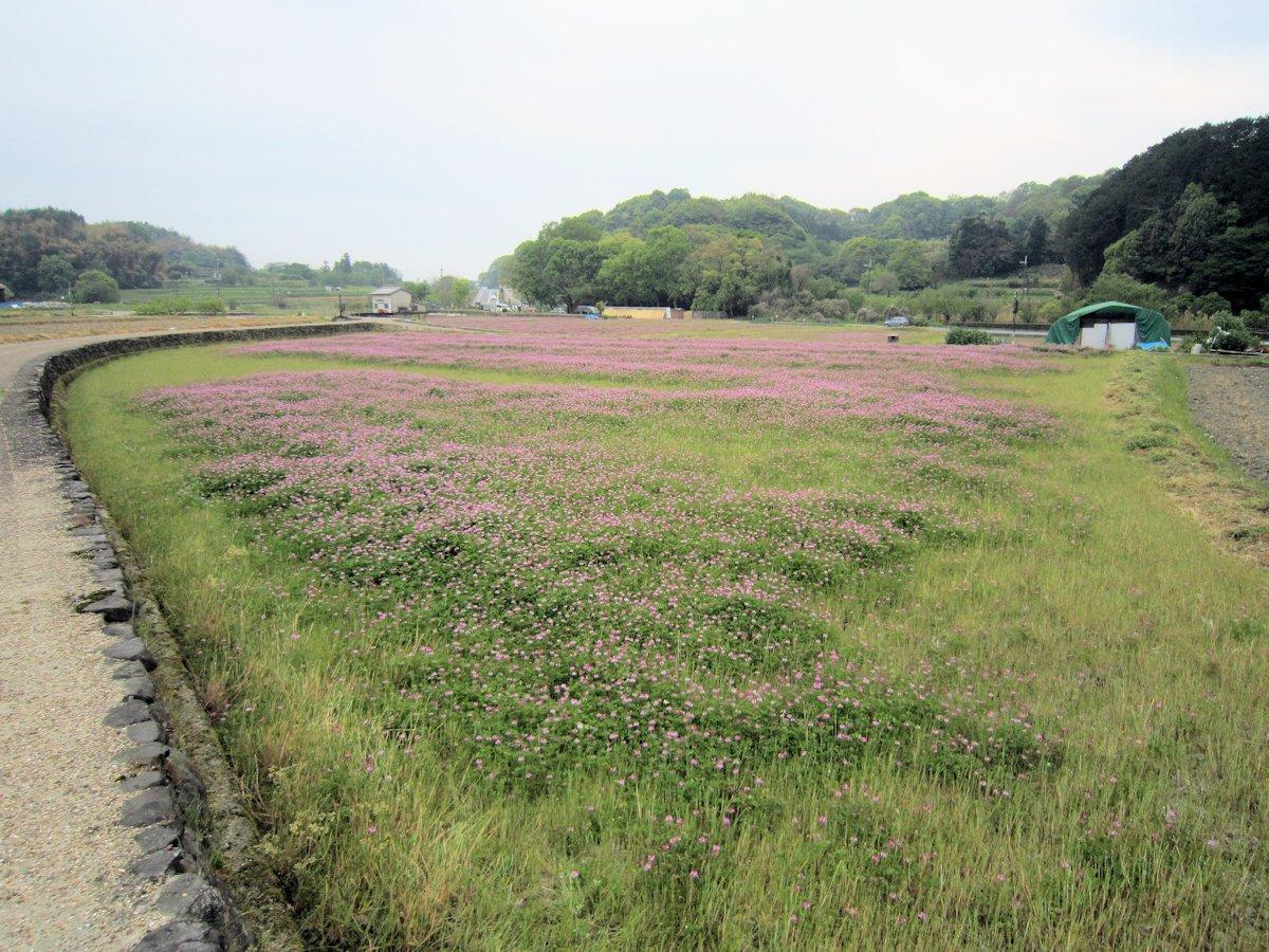 初夏の明日香村風景