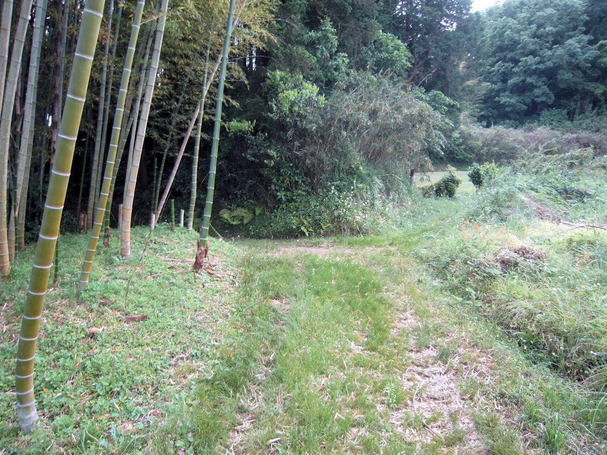 高田山口神社と徳利塚古墳の分岐点