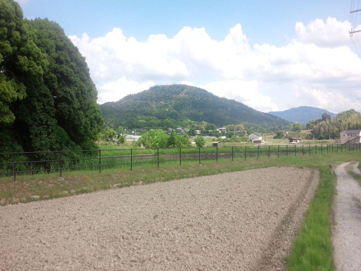 景行天皇陵から望む三輪山