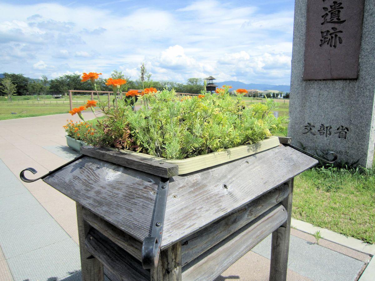 唐古鍵遺跡史跡公園の花壇