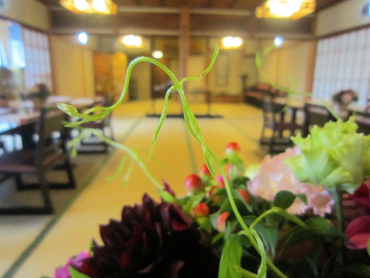 高砂装花の利久草