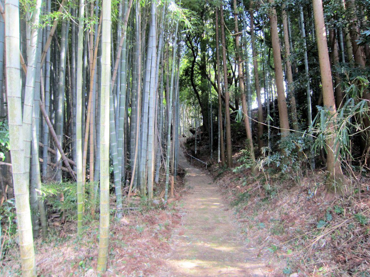 高田山口神社のアクセスルート