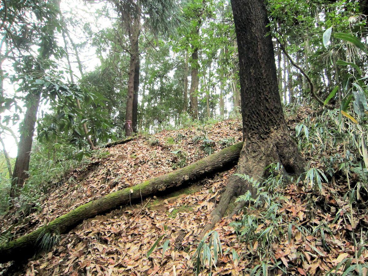 エンドウ山古墳群のアクセスルート