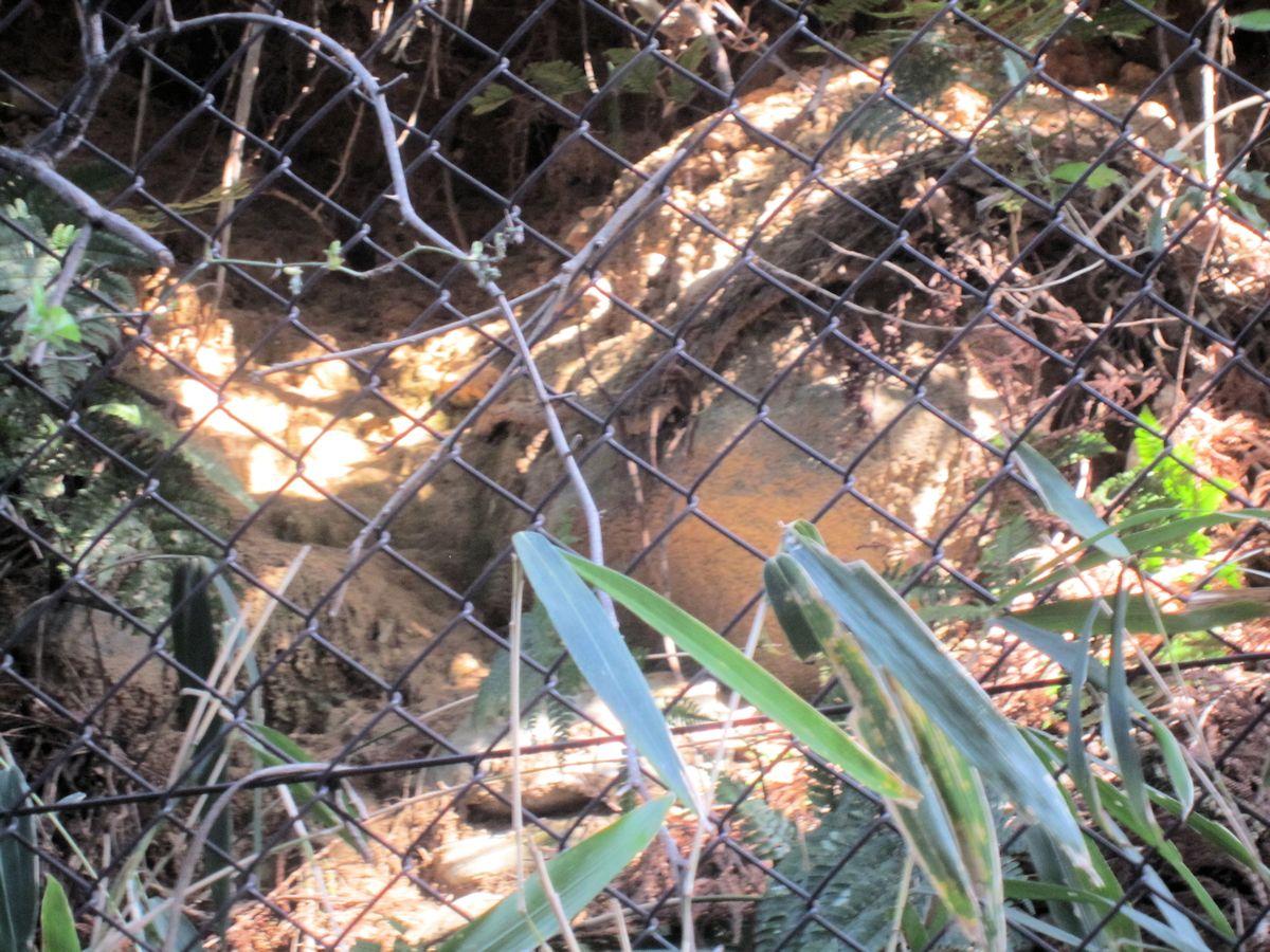 カタハラ1号墳の開口部