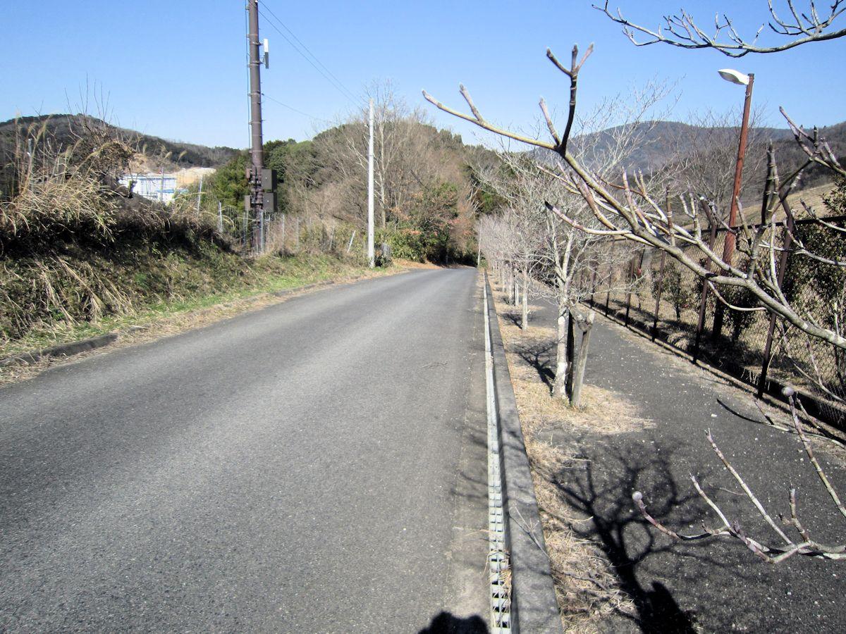 カタハラ1号墳の道