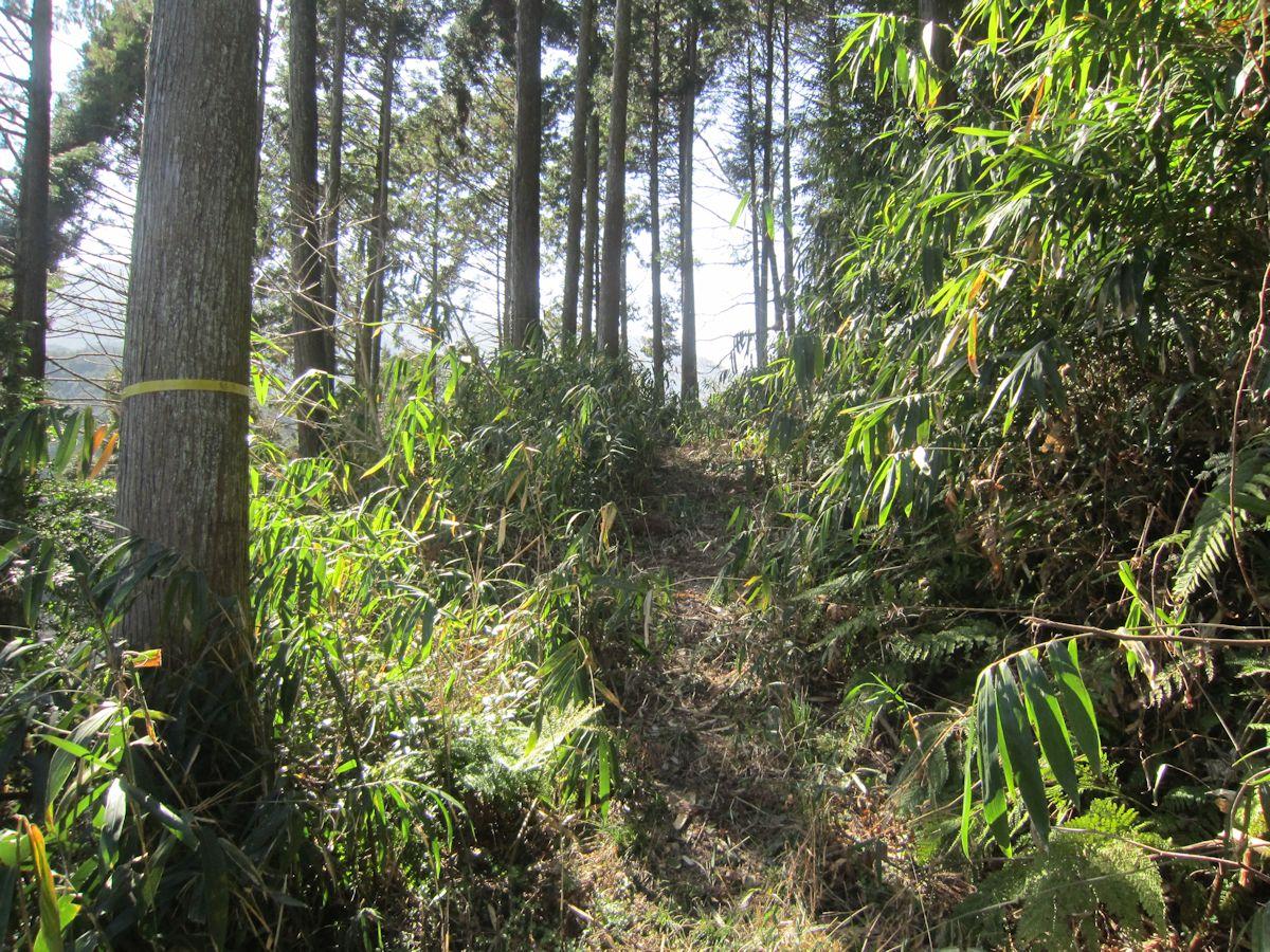 ムネサカ古墳のアクセスルート