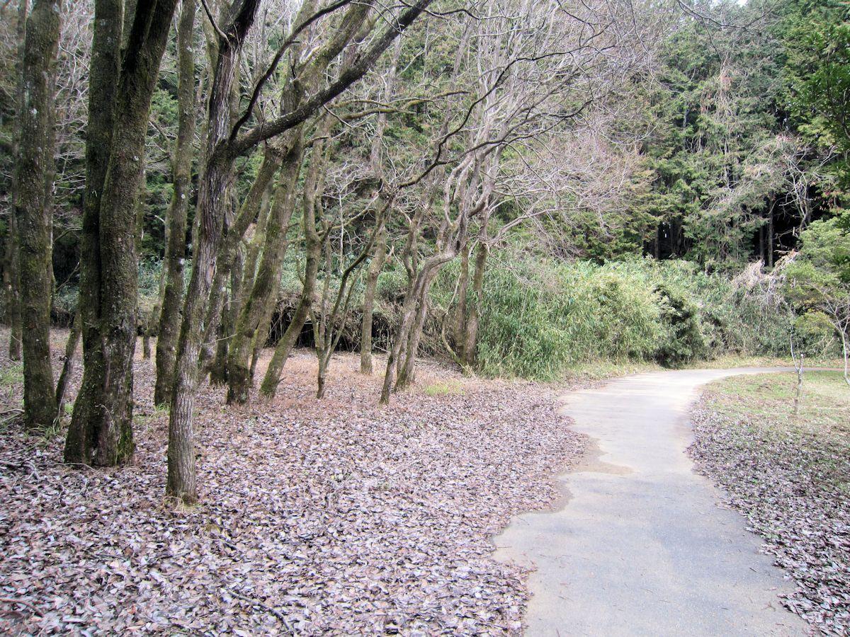 Endoyama tumulus Route
