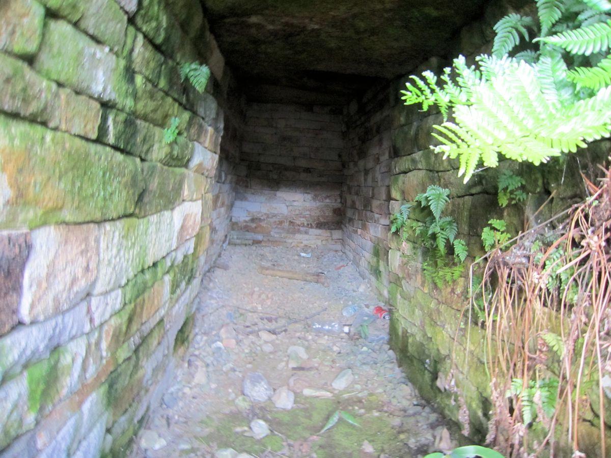 奥ノ芝1号墳の横穴式石室