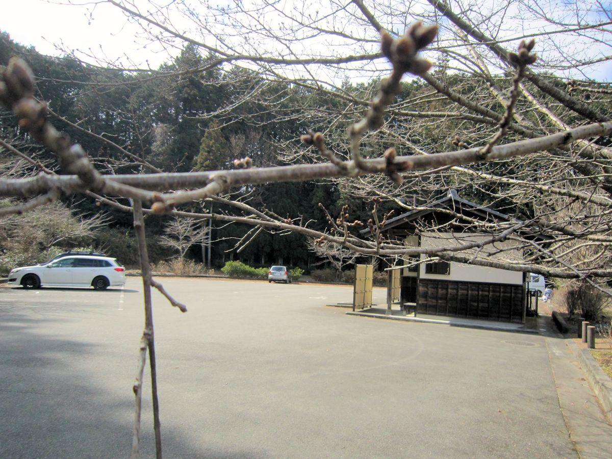 桜の宮広場の駐車場