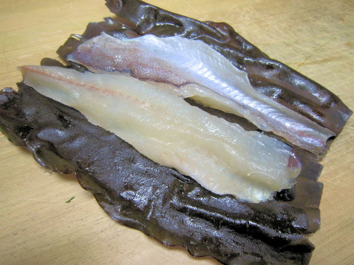 ヨロイイタチウオの昆布締め
