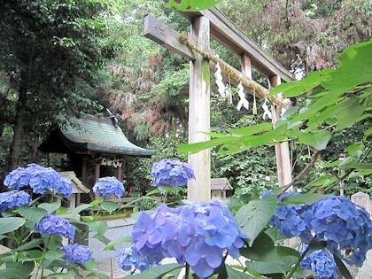 鴨都波神社の神農社